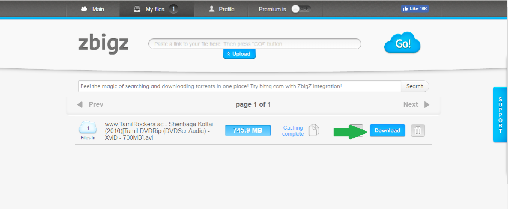 How to Download torrent file in Browser - torrent.to IDM
