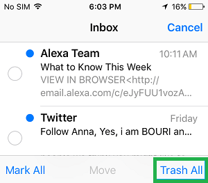 How to Delete emails on iPhone, iPad, or iPod touch
