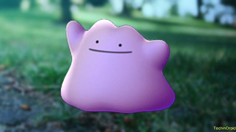 5. How to capture Ditto