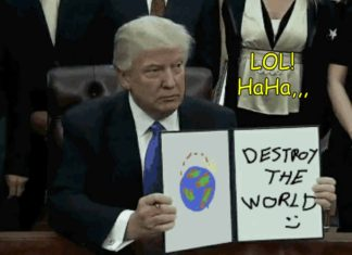 Donald Trump Meme Generator Android app | Create your own Meme Wall