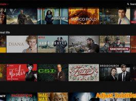 How to Adjust Language Subtitles on Netflix