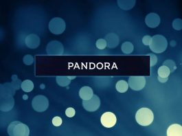 pandora for android (2)