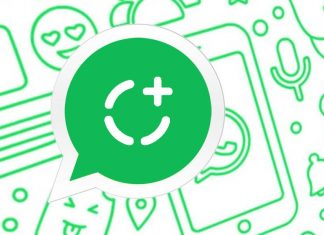 Download WhatsApp Status Videos & Photos